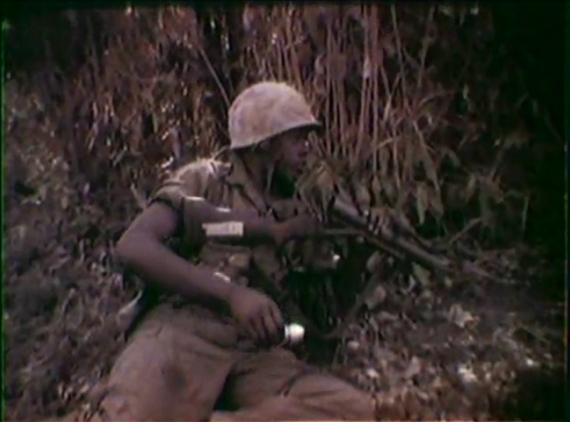 Video Footage of the 173D Airborne Brigade Combat Operation from 1965 (Local Identifier: 111-LC-48914 )